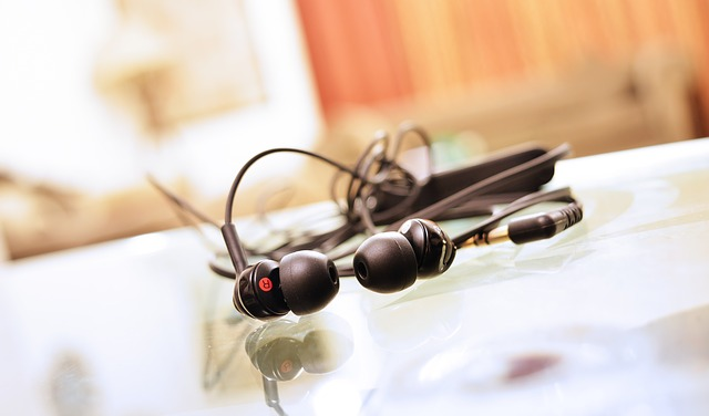 earphones-893156_640