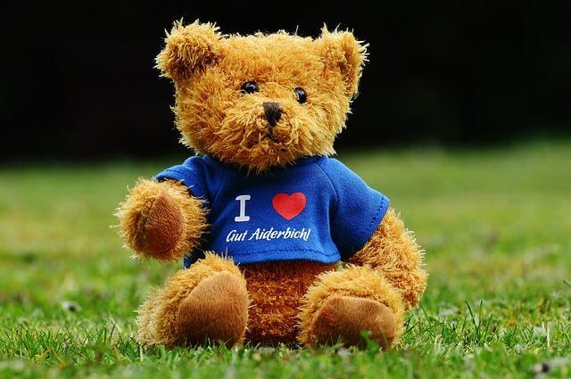 teddy-1338809_640