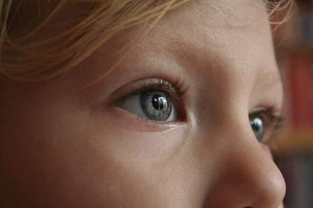 eye-784903_640
