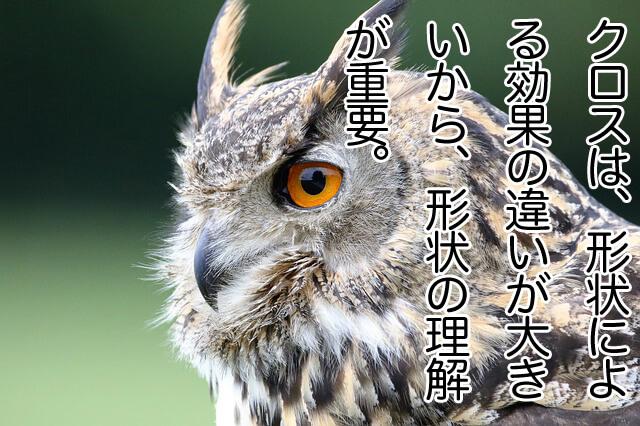 eurasian-eagle-owl-1642795_640