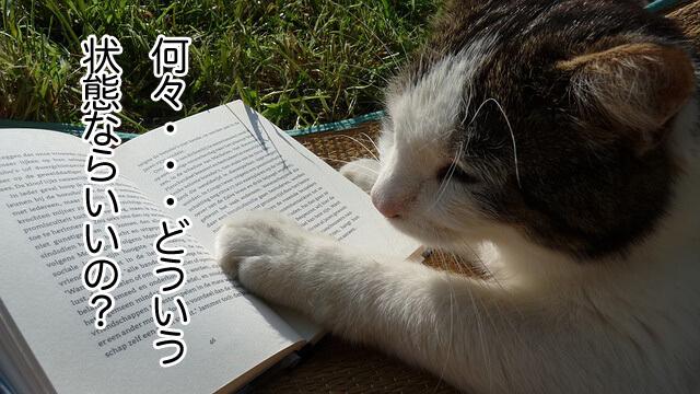 reading-498103_640-1
